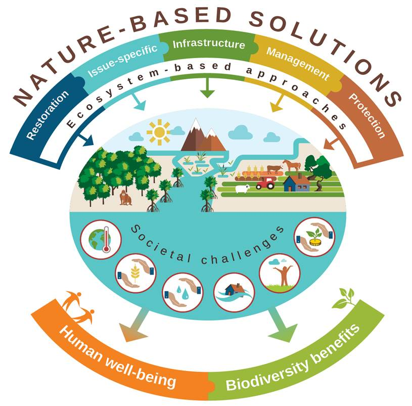Nature-based Solutions infographic