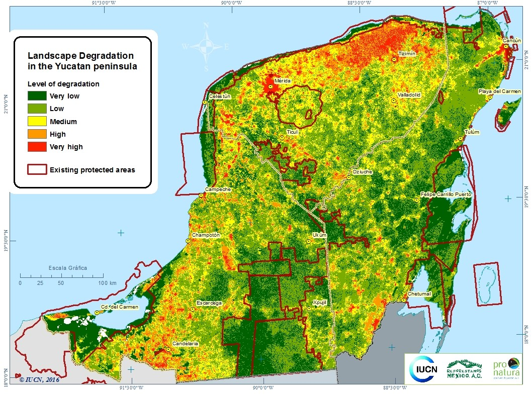 Yucatan Peninsula opportunity map