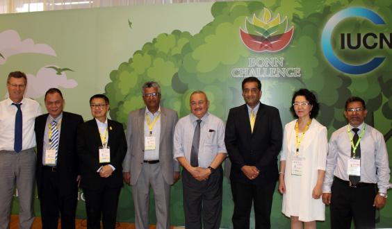 Four pledges from Asia have helped the Bonn Challenge cross the 150 million hectare milestone.
