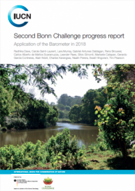 Bonn Challenge progress report 2018